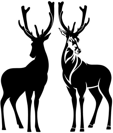 animals horned: standing deer outline and silhouette - beautiful wild animal vector design