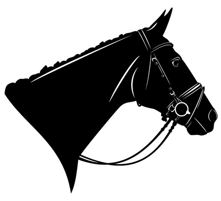 harness: black horse profile head with harness