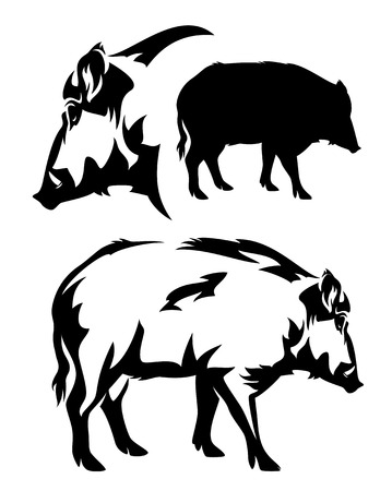 wild hog: wild boar black and white vector outline and silhouette Illustration