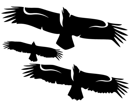 spread wings: flying eagle with spread wings - black and white design vector collection