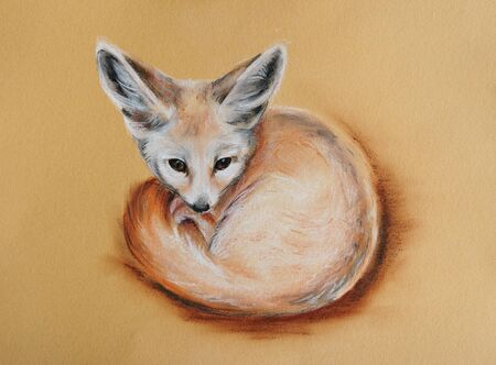 cute fennec fox pastel drawn animal with detailed paper texture