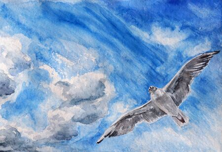 soaring: watercolor painting with paper texture - soaring seagull against blue sky and white clouds Stock Photo
