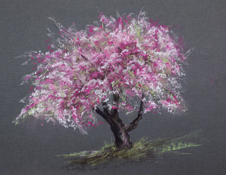spring season tree blossom - pastel drawn sakura with detailed paper texture Stock Photo