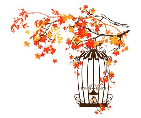 bird cage among autumn tree branches - fall season design