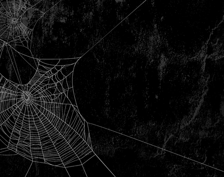 spooky: Spider web silhouette against black shabby wall - halloween theme spooky background with place for your text