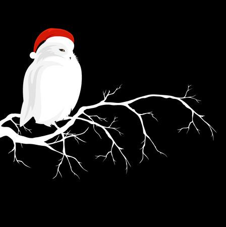 Witte uil dragen rode kerstmuts zittend op tak - winterseizoen wildlife vector design Stockfoto - 68634085