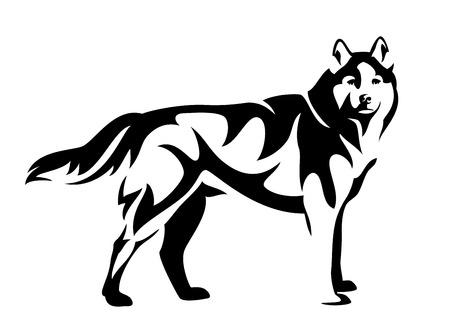Vista lateral de perro husky de pie diseño vectorial blanco y negro