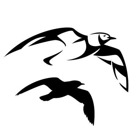 soar: Flying seagull vector design - black and white bird outline and silhouette