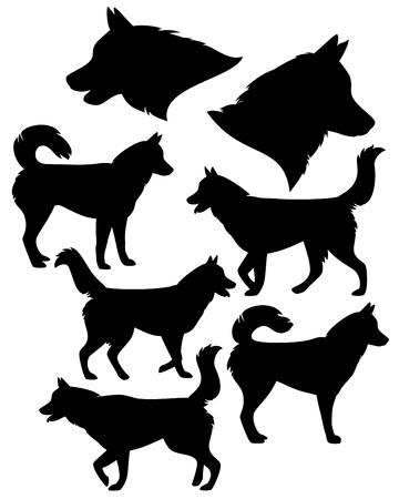 Colección silueta husky siberiano Ilustración de vector