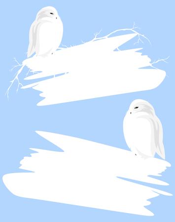 sneeuwuil die lege witte banner houdt - Kerstmis vectorontwerp