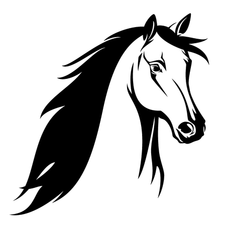 Horse head black and white vector design.