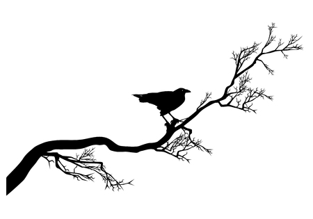 long twisted tree branch and raven bird black silhouette - halloween theme design vector Vettoriali