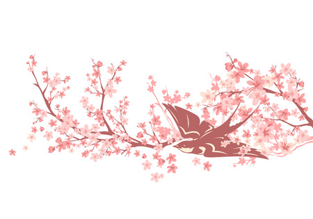 swallow bird among blooming sakura branches - spring season cherry tree vector design