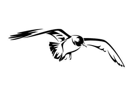 flying seagull black and white vector illustration