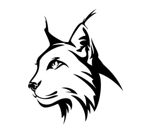 lynx profile head - wild cat side view black and white vector portrait Ilustração