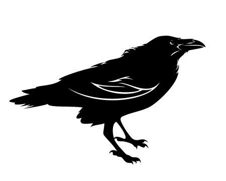 Contour de vecteur noir et blanc oiseau corbeau debout