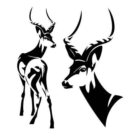 Impala antelope (Aepyceros melampus) black and white  outline Stock Vector - 113038133