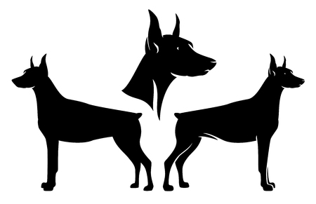 Standing side view doberman pinscher and dog profile head - black and white vector design set Vettoriali