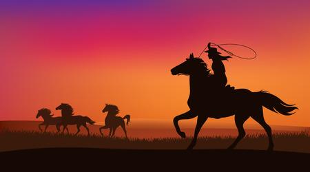 Bella cowgirl che insegue una mandria di cavalli mustang selvaggi al tramonto