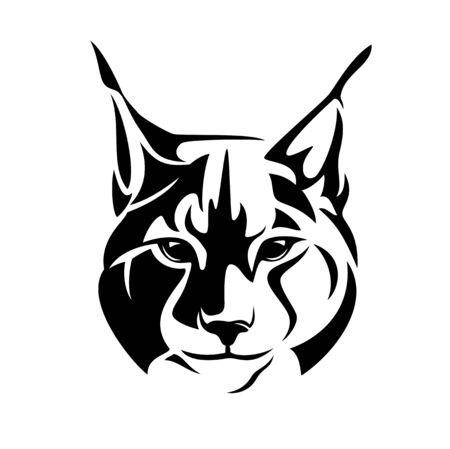 Wild lynx looking straight forward - bobcat en face head black and white