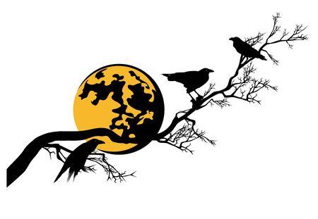 Black raven birds sitting on long bare tree branch under full moon