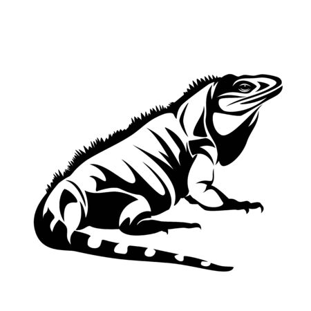 Iguana lizard black and white vector outline Stock Illustratie