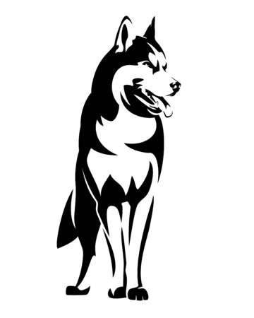 Beautiful siberian husky black and white vector outline