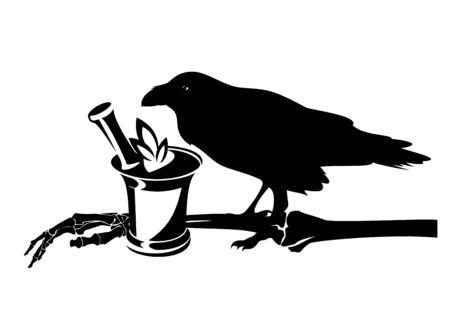 Raven bird, human skeleton hand and mortar with herbs