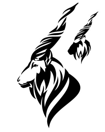 Markhor mountain goat side view head