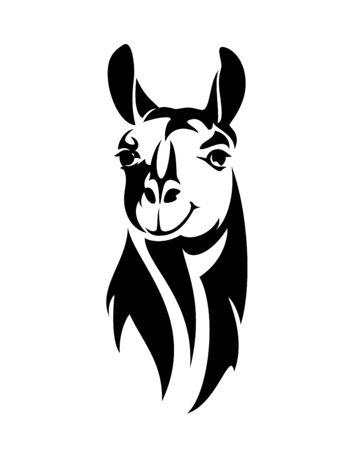 Tête de lama ou d'alpaga regardant droit vers l'avant le portrait de contour vectoriel noir et blanc