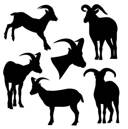 daghestan tur black and white vector silhouette set - standing and jumping mountain goats outline collection