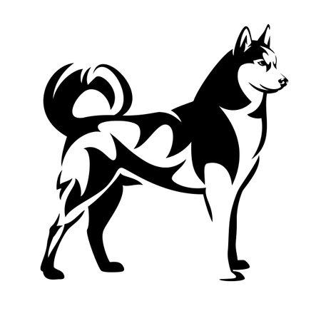 standing siberian husky black and white vector outline - malamute sled dog portrait design