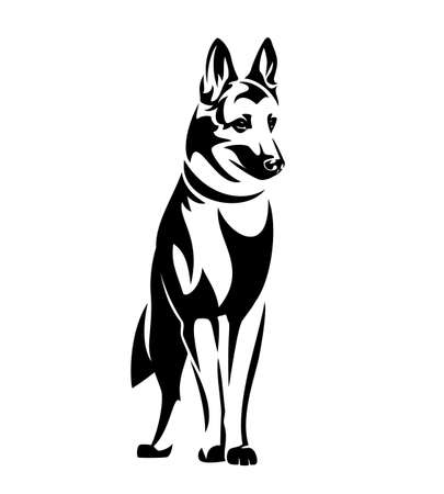 standing german shepherd or belgian malinois dog black and white vector outline portrait