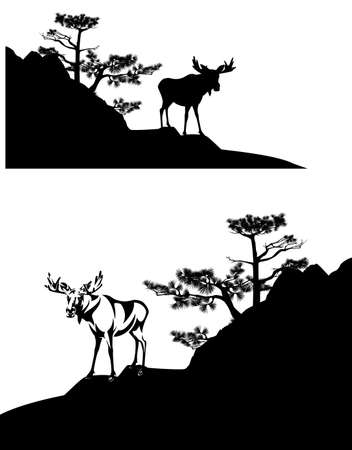 wild moose buck standing on pine covered rock cliff - black and white vector silhouette scene with bull elk and trees