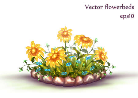 flowerbed: Vector flowerbed with grass and flowers on white background