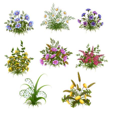 Vector floral bush set on transparent background. Vector