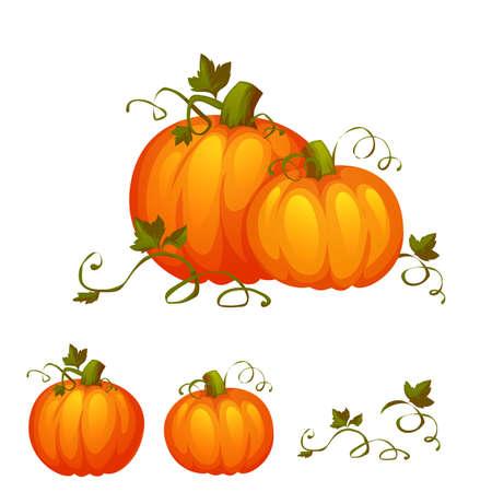 pumpkin: Fresh two pumpkin with sweet green leafs.