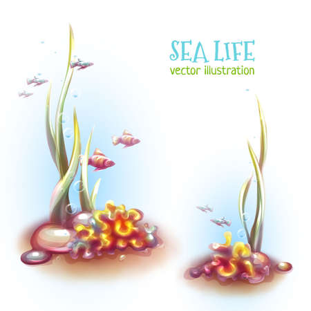Vector illustration of decorative corals and seaweed. Illustration
