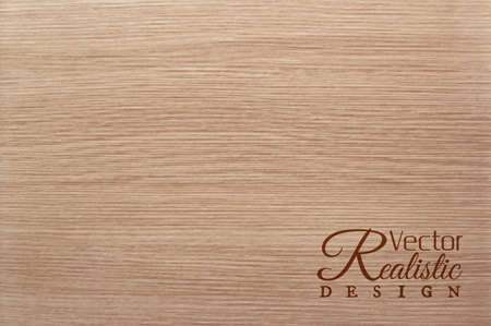 plywood: Vector white oak texture background. Realistic design