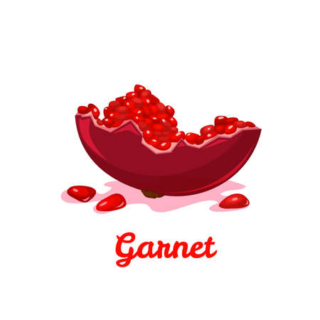 Sweet fresh red garnet. Vector flat illustration. Ilustracja