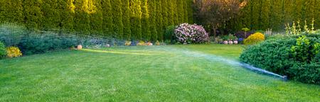 Irrigatie van het groene gras met sproeisysteem.