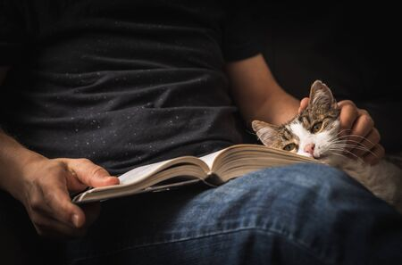Reading book on sofa with cuddling of cat. Imagens