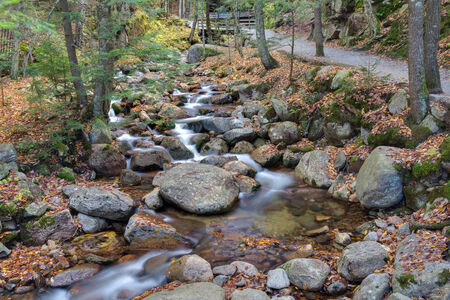 notch: water stream and falls in franconia notch state park, new hampshire, usa