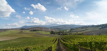 orcia: Tuscany countryside landscape in Val D39Orcia Italy