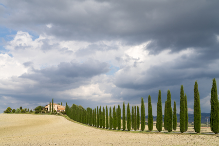 val d orcia: Landscape of countryside in Val d Orcia province. Tuscany Italy. Stockfoto