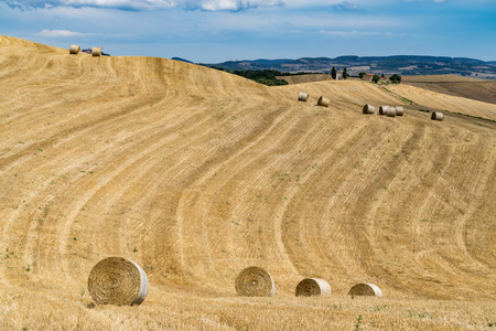 cappella: Rolling hills and harvest fields in golden evening light with famous Cappella della Madonna di Vitaleta, Val dOrcia, Tuscany, Italy