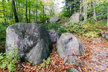 Glacial boulders in Franconia notch state park, new hampshire, usa