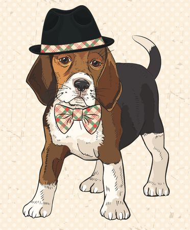 Vector illustration of purebred fashion dog with black hat on his head and checkered bow tie on his neck. Vintage polka dot texture with scrapes as background. Retro dog.