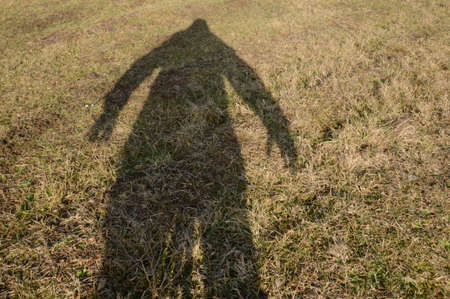 played: played of  shadows and photographed in nature and of the tripod and front of him on the grass