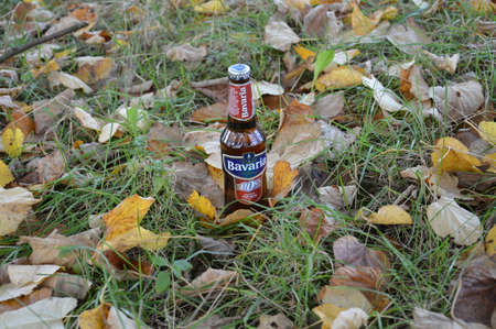 non alcoholic beer: Water drops on bottle of non alcoholic beer in nature is Bavaria beer  of Holland